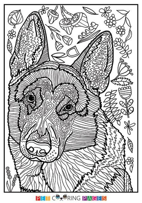 coloring pages for adults of dogs 242 best images about i coloring on