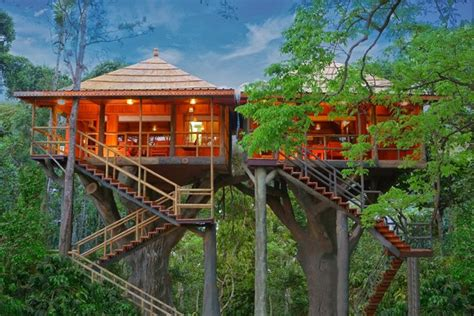 treehouse vacations rangerwood nature castle machan treehouse kerala treehouse