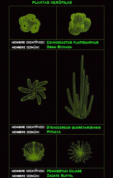 desert plants  dwg block  autocad designs cad
