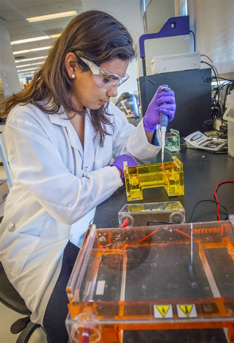 college work the iclem program an atypical summer job for bay area