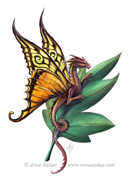 tattoo dragon butterfly dragonfly logo by ironshod on deviantart