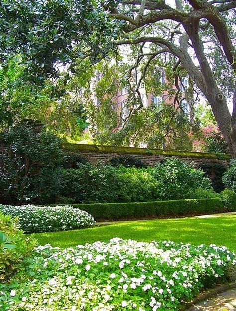 Landscape Supply Charleston Sc 1000 Images About Landscaping On
