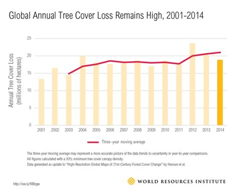 how much are trees satellites uncover 5 surprising hotspots for tree cover