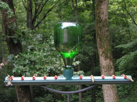 homemade hummingbird feeder bird house cage bath