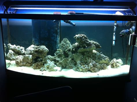 fish tank headboard for sale fish tank headboard price 8 extremely interesting places