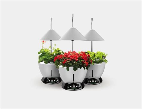 hydroponic herb garden kit igrow led indoor hydroponics herb growing kit 187 gadget flow