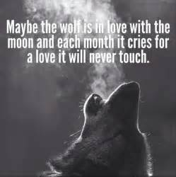 Lone Wolf Meme - lone wolf quotes image quotes at relatably com
