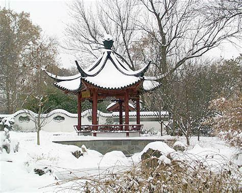 china garden winter missouri botanical garden garden