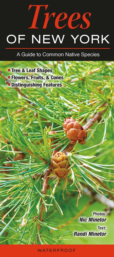 Wholesale Fruit Trees - trees of the new york quick reference publishing