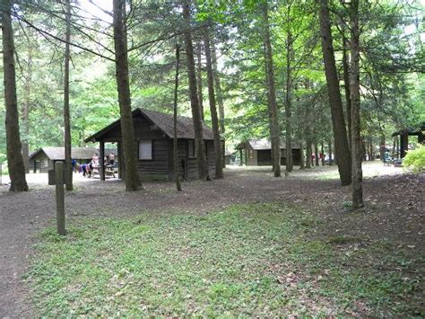 Robert H Treman State Park Cabins cing in the park picture of robert treman state park