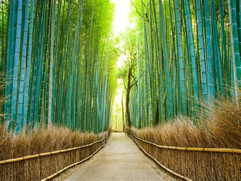 best beutiful 25 most beautiful places in japan photos cond 233 nast