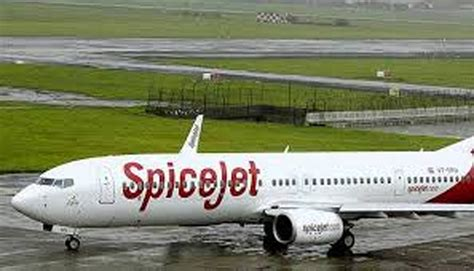 spicejet to start dedicated air cargo services from sep 18