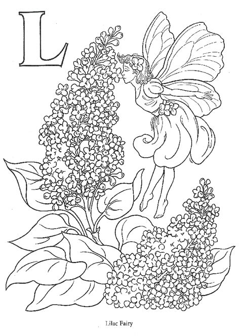 coloring pages for adults of fairies coloring pages for adults coloring home