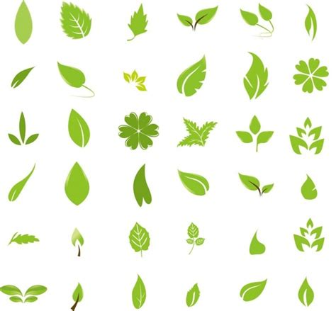 leaf pattern cdr leaf free vector download 3 719 free vector for