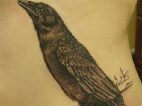 hungry crow tattoo design busbones