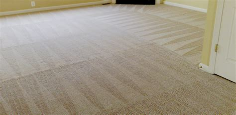 area rug cleaning san diego rug carpet cleaner images knoxville carpet images