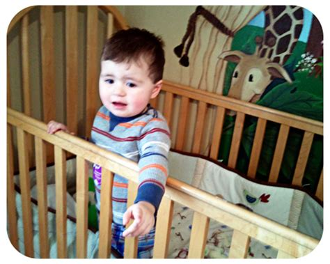 2 Year Keeps Climbing Out Of Crib by Why Were Crib Tents Recalled Home Improvement