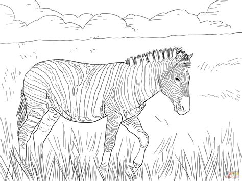 aardvark to zebra animals of africa coloring book books 41 collections of coloring pages zebra gianfreda net