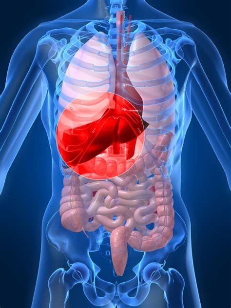 hcv new drugs developments in hepatitis c treatment