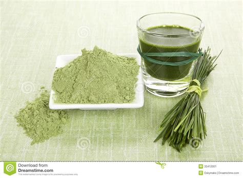 Wheatgrass Powder Detox by Green Food Supplements Stock Image Image Of Drink