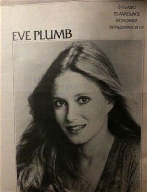 64 best images about plumb on lloyd
