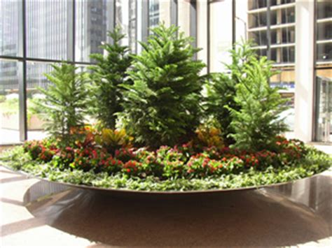 office plant decoration kl plant rentals landscaping and design chicago il