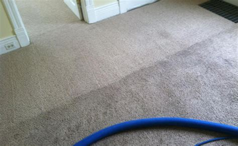 upholstery cleaning appleton wi carpet cleaning services appleton wi carpet nrtradiant