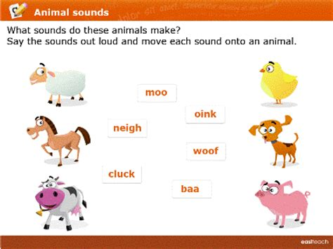 quotes  animal sounds  quotes