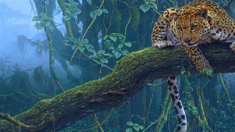 imagenes de jaguar hd beautiful jaguar wallpaper hd