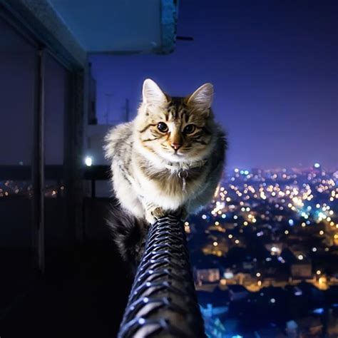 cat live wallpaper for pc cat live wallpaper android apps on google play