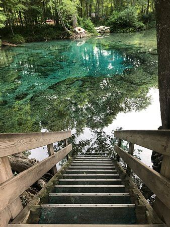 Ginnie Springs Cabin Rentals by Ginnie Springs High Springs Fl Top Tips Before You Go