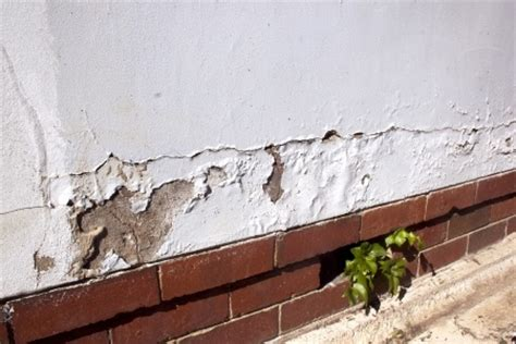 exterior paint peeling 8 simple tips to correct exterior peeling paint