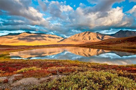 gates of the arctic national park twelve years of wilderness exploration books gates of the arctic national park mowryjournal