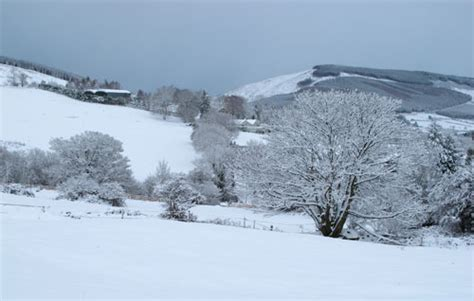 november snow at ballythomas co wexford ireland an