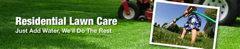 lawn care what s in a yard keys to excellent landscaping for plano