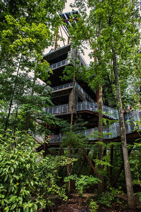 sustainability treehouse  summit bechtel reserve