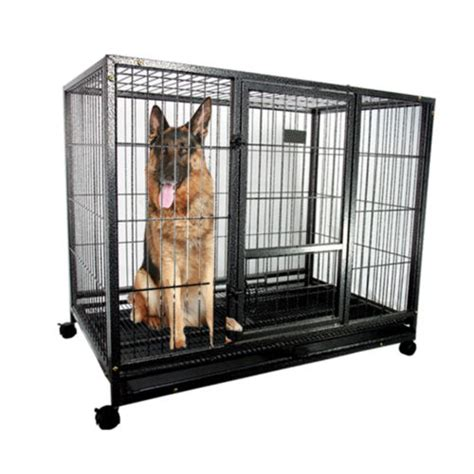 puppy cage 43 quot heavy duty metal cage kennel sturdy pet puppy crate kennel big cat new ebay