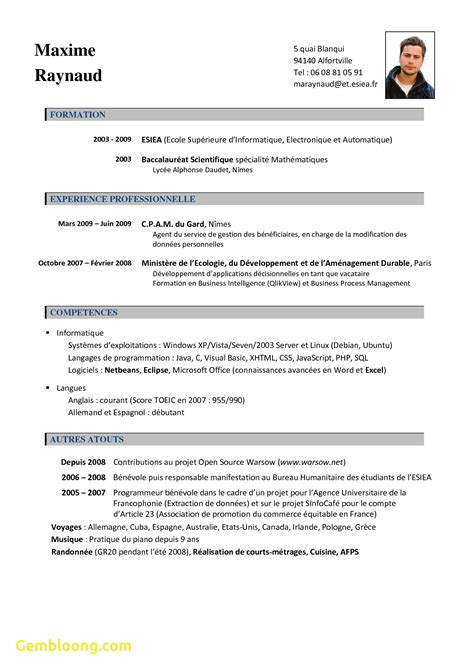 template za cv best of curriculum vitae template za best templates