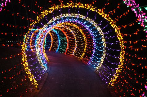 Glow Light by Dubai Theme Park Glow Garden Uae Mums