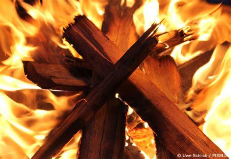 lagerung brennholz brennholz lagern so machen sie richtig feuer garten