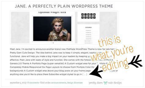 wordpress excerpt layout change post excerpt link text pretty darn cute design