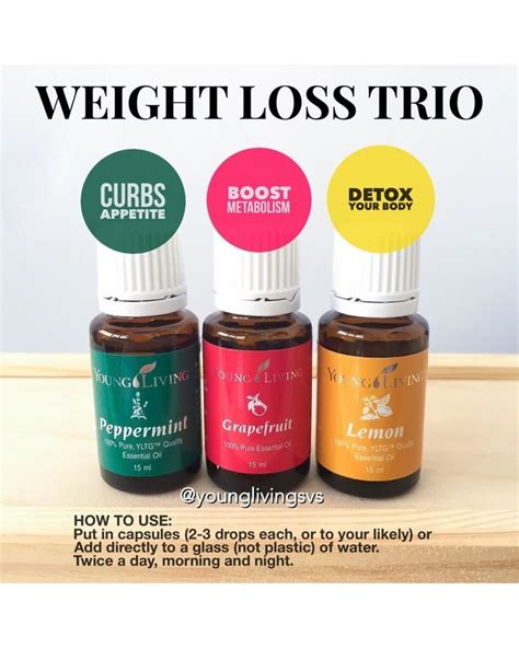 Detox Therapy Weight Loss by Best 25 Living Detox Ideas On Essential