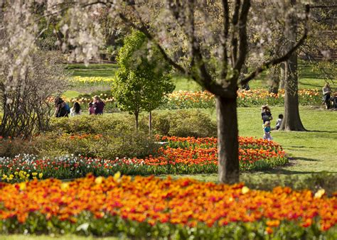 Sherwood Gardens Baltimore by Blooms At Sherwood Gardens Through The Years