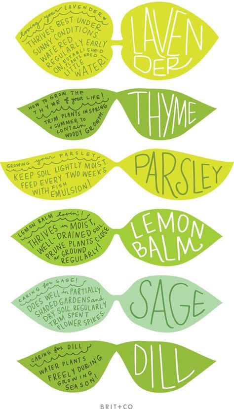 printable garden labels gardens vertical gardens and free fun on pinterest