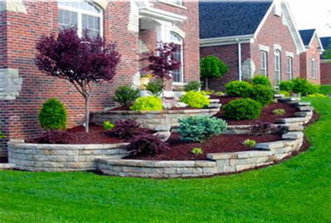best shrubs for front yard landscaping landscaping shrubs and bushes ideas pictures plans