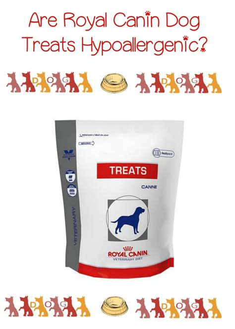 Hypoallergenic Royal Canin hypoallergenic treats from royal canin