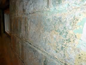Painting Concrete Walls In Basement by Painting How Should I Encapsulate A Basement Wall With