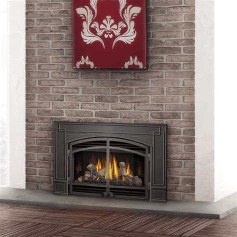 Fireplace Door Inserts by 25 Best Ideas About Fireplace Inserts On Gas
