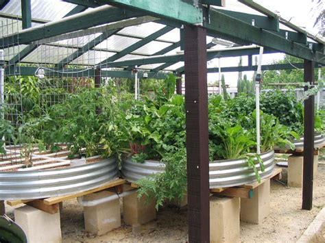backyard systems newtopia aquaponics 101 synaptoman