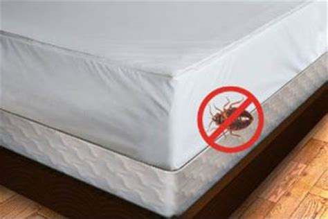 Where Can I Buy Bed Bug Mattress Covers by How To Find Cheap And Excellent Bed Bug Mattress Covers